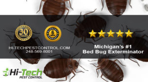 Bed Bug Pest Control in Michigan