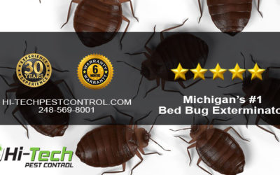 WHAT MAKES BED BUG POPULATIONS UNHEALTHY