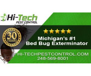 Bed Bug Exterminator Services in Michigan