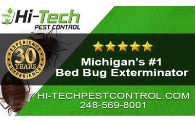 Do Home Remedies Work? | MI Bed Bug Exterminator