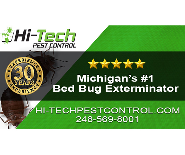 Novi Bed Bug Confidential: An Expert Explains How to Defend against the Dreaded Pests