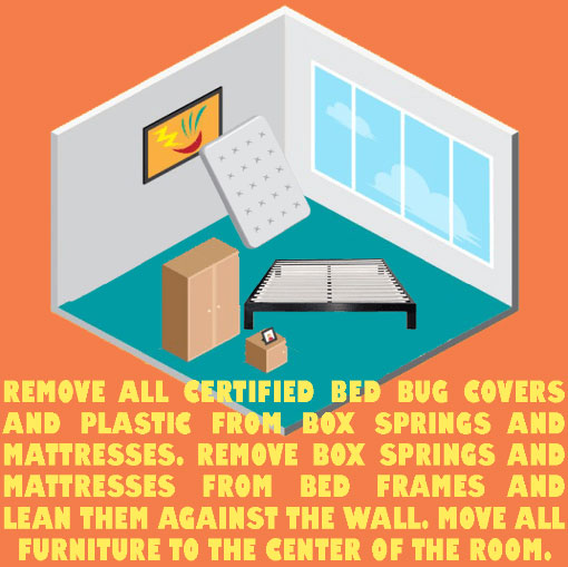 Bed Bug Pest Control Exterminator Step 5